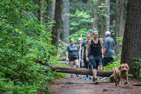 group hike through woods with dog