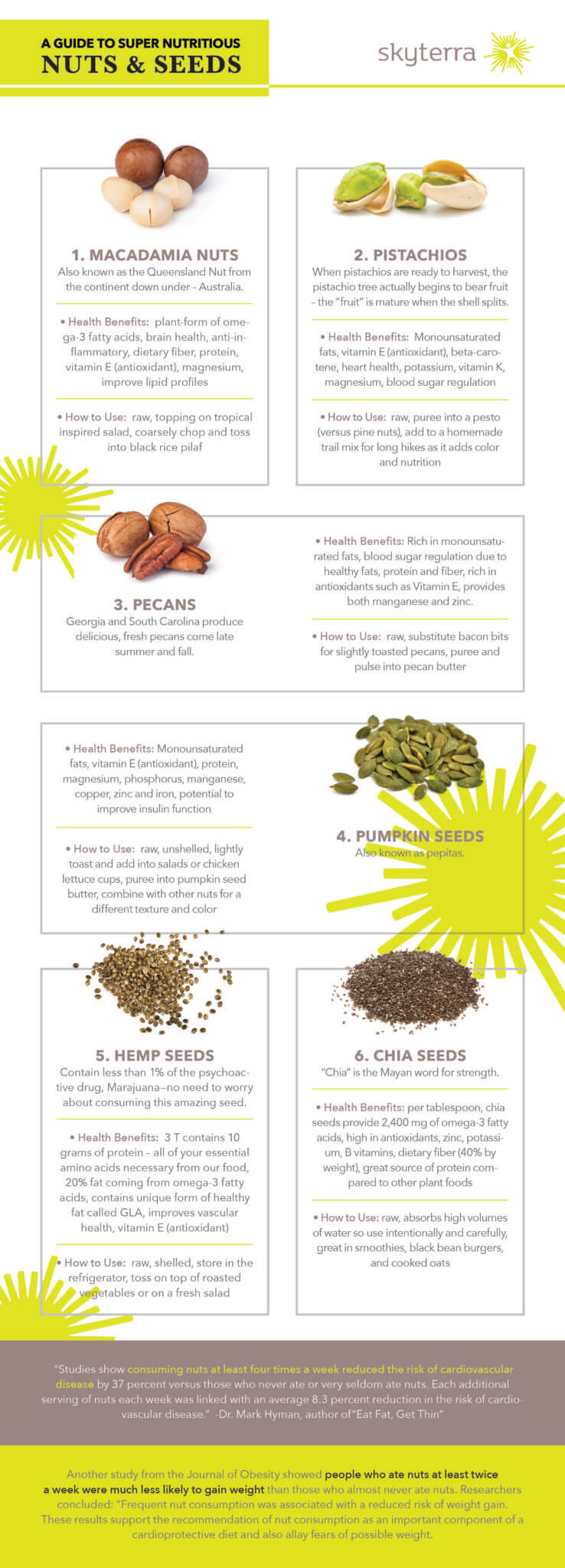 nuts and seeds infographic