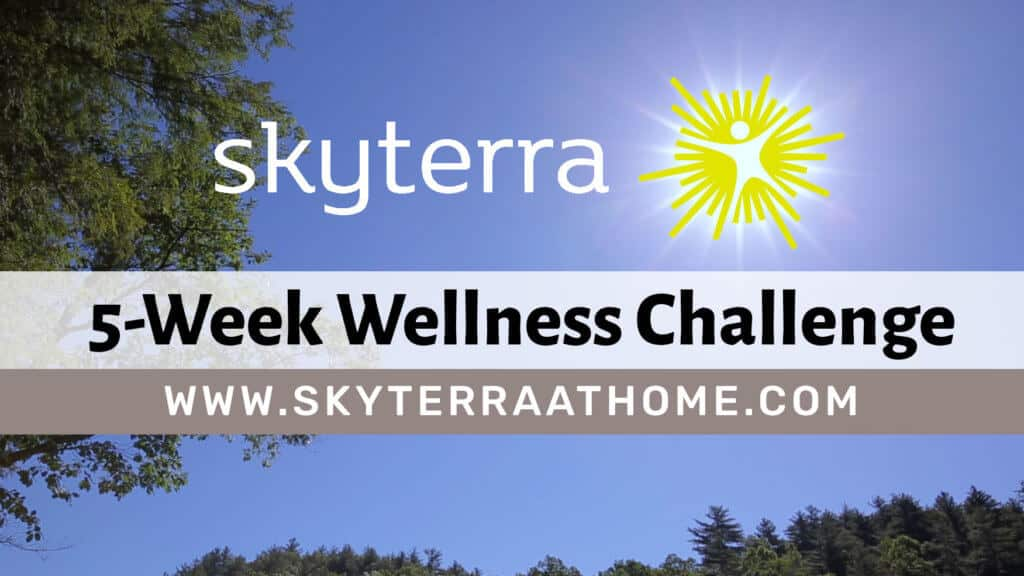 New Year's Wellness Challenge