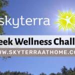 New Year's Wellness Challenge